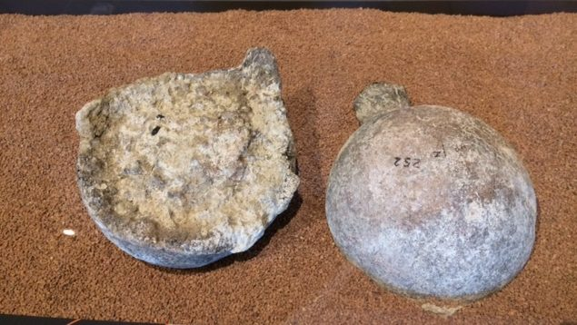 These two mastodon femur heads were broken off the larger femur bones by using a hammer stone and anvil stone. The femur heads were placed side by side, one face up, the other face down, by hominin hands.