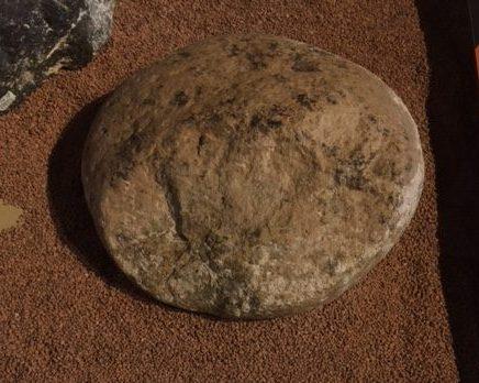 Round hammer stone used to break open mastodon bones.